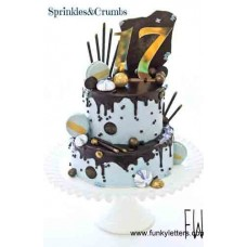 IndIvidual Numbers cake toppers