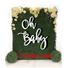 Generic Baby Words for Large floral walls and back drops