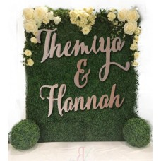 Large Signs for Hanging Floral Walls/ Backdrop 2 names